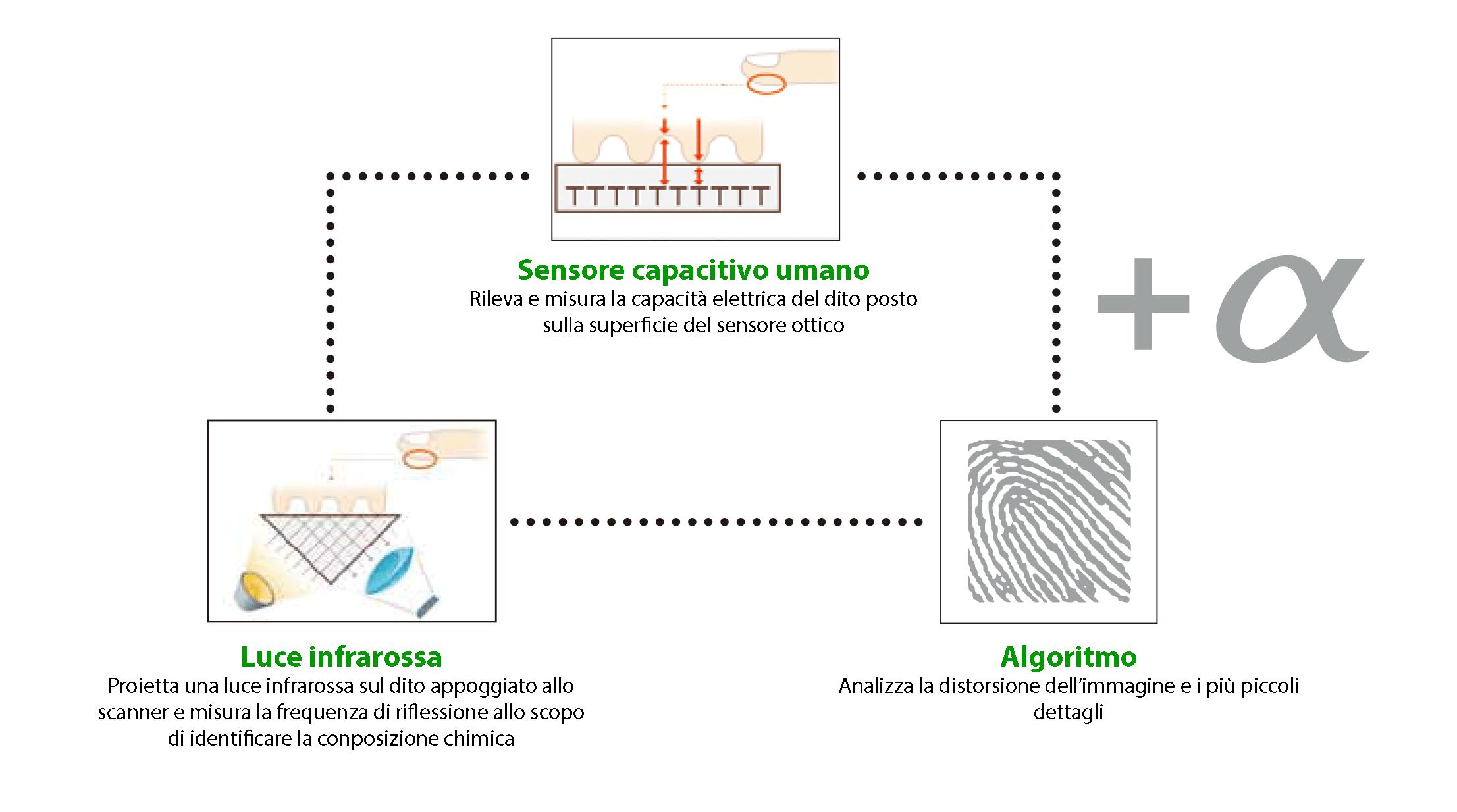 Tecnologia riconoscimento impronte digitali falsi lettori biometrici Plexa